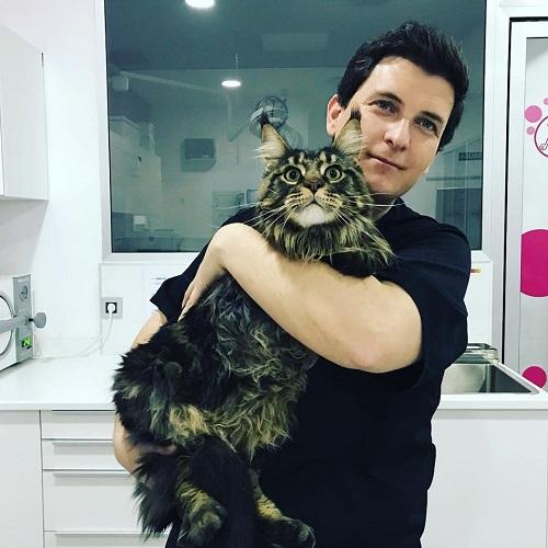 Entrevista a Germán en ProntoPro – Clínica felina donde tu gato será el rey
