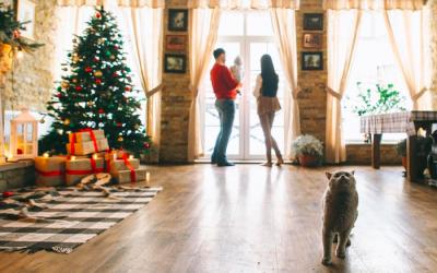 Cómo evitar los peligros navideños que acechan a tu gato: árbol de Navidad y adornos